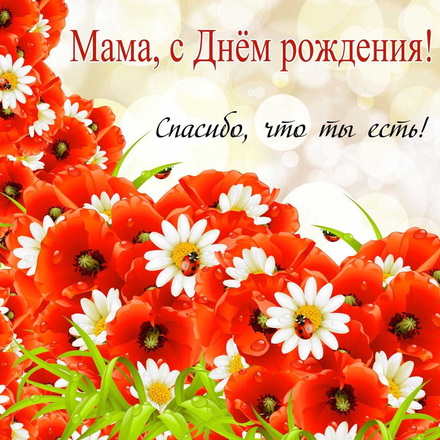 Поздравление красной маме на день рожденья