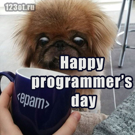 Дорогой друг! С днем программиста! Поздравляю с профессиональным праздником! Epam Systems! Happy programmers day!  скачать открытку бесплатно   123ot