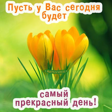 Милая открытка чудесного и просто хорошего дня для коллег и друзей по работе! скачать открытку бесплатно | 123ot