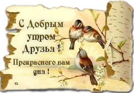 Красивая картинка доброе утро для друга и друзей! скачать открытку бесплатно | 123ot