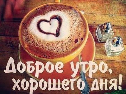 Красивая картинка доброго дня друзьям! скачать открытку бесплатно | 123ot