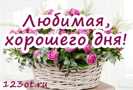 Милая открытка с пожеланием хорошего дня любимой женщине! скачать открытку бесплатно | 123ot