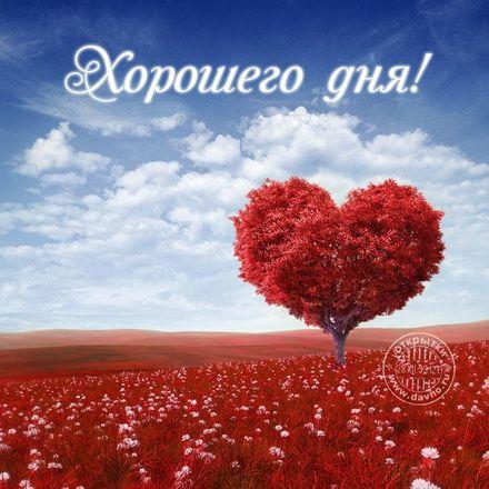 Нежная открытка хорошего дня любимой девушке! скачать открытку бесплатно | 123ot