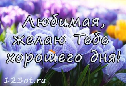 Прекрасная открытка с пожеланием хорошего дня для любимой! скачать открытку бесплатно | 123ot