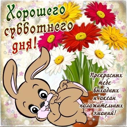 Прикольная картинка доброго дня для друзей! скачать открытку бесплатно | 123ot