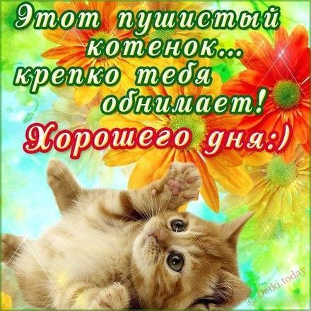 Прикольная открытка хорошего дня друзьям! скачать открытку бесплатно | 123ot