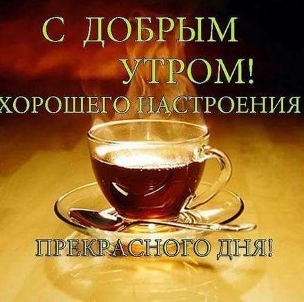 Веселая открытка доброе утро для друга и друзей! скачать открытку бесплатно   123ot