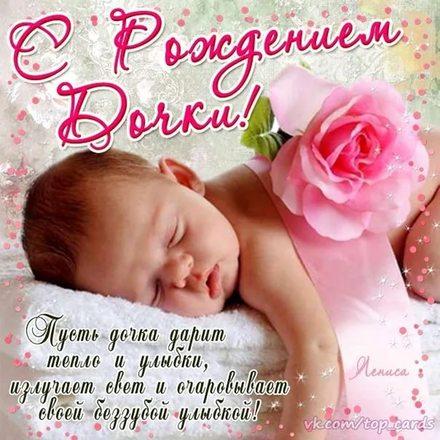 Открытка с рождением дочки бесплатно! Роза. Цветочек. скачать открытку бесплатно | 123ot