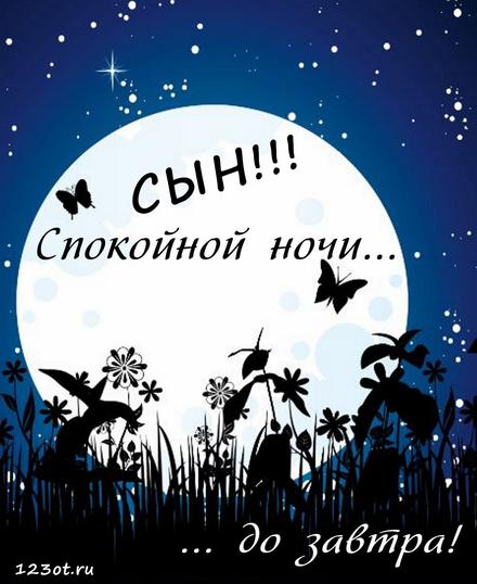 Гифка спокойной ночи для сына, для сыночка скачать онлайн бесплатно! скачать открытку бесплатно | 123ot