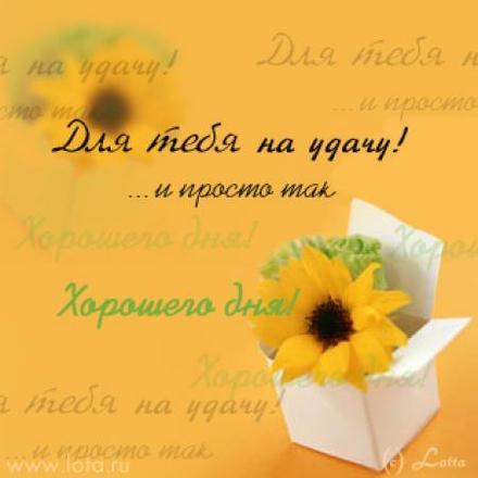 Картинка успеха, красоты, удачи для подружки, подружке отправить на вацап (whatsApp)! скачать открытку бесплатно   123ot