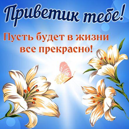 Яркая, красивая открытка привет, приветик с цветами, с текстом, с пожеланием и стихом! Картинка с цветами и пожеланием. Скачать открытку на тему привет, приветик с цветами бесплатно онлайн! скачать открытку бесплатно | 123ot