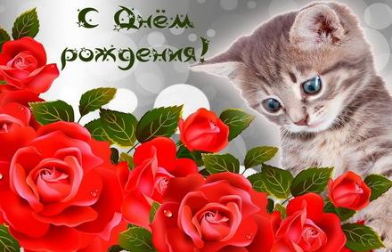 Яркая, красивая открытка с днём рождения куме с текстом, с пожеланием и стихом! Дорогоая кума, с днём рождения! Котенок и красные розы на День рождения. Скачать открытку на день рождения женщине бесплатно онлайн! скачать открытку бесплатно | 123ot