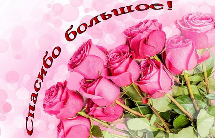 Яркая, красивая открытка спасибо и благодарю с цветами, с текстом, с пожеланием и стихом! Красивый букет из розовых роз. Скачать открытку на тему спасибо и благодарю с цветами бесплатно онлайн! скачать открытку бесплатно | 123ot
