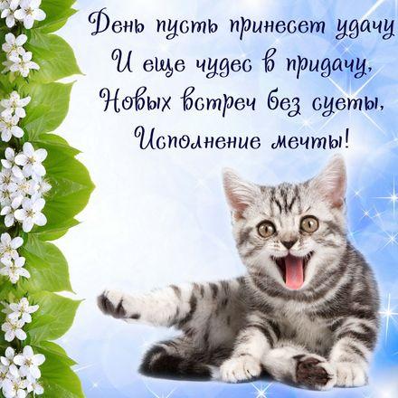 Яркая, красивая открытка с пожеланиями и стихами для любимых! Красивый котенок с пожеланием удачи. Скачать открытку для самого дорогого человека бесплатно онлайн! скачать открытку бесплатно | 123ot