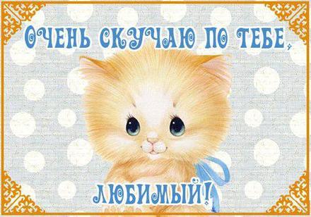 Мультяшная открытка я скучаю для любимых девушек или парней скачать на телефон для вацап! скачать открытку бесплатно   123ot