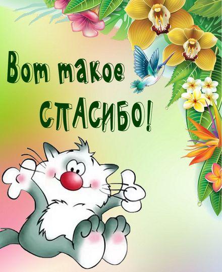 Яркая, красивая открытка спасибо и благодарю с цветами, с текстом, с пожеланием и стихом! Мультяшный котик говорит спасибо. Скачать открытку на тему спасибо и благодарю с цветами бесплатно онлайн! скачать открытку бесплатно   123ot