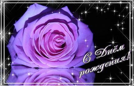 Яркая, красивая открытка с днём рождения куме с текстом, с пожеланием и стихом! Дорогоая кума, с днём рождения! Огромная роза на темном фоне с блестками. Скачать открытку на день рождения женщине бесплатно онлайн! скачать открытку бесплатно | 123ot