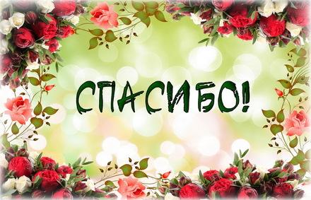 Яркая, красивая открытка спасибо и благодарю с цветами, с текстом, с пожеланием и стихом! Открытка с красивой рамкой из цветов. Скачать открытку на тему спасибо и благодарю с цветами бесплатно онлайн! скачать открытку бесплатно | 123ot