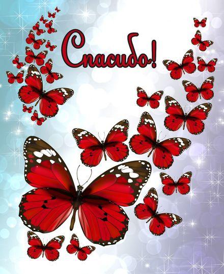 Яркая, красивая открытка спасибо и благодарю с цветами, с текстом, с пожеланием и стихом! Открытка с красными бабочками. Скачать открытку на тему спасибо и благодарю с цветами бесплатно онлайн! скачать открытку бесплатно   123ot