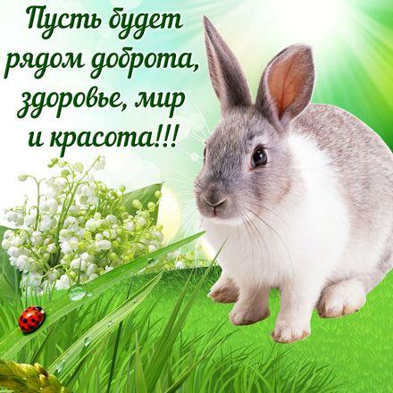 Яркая, красивая открытка с пожеланиями и стихами для любимых! Открытка с милым кроликом на травке. Скачать открытку для самого дорогого человека бесплатно онлайн! скачать открытку бесплатно   123ot