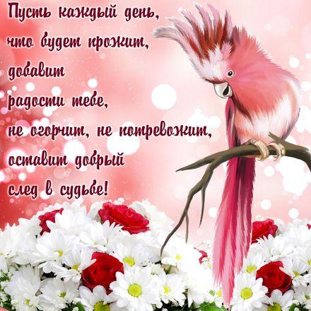 Яркая, красивая открытка с пожеланиями и стихами для любимых! Забавный попугай на фоне цветов. Скачать открытку для самого дорогого человека бесплатно онлайн! скачать открытку бесплатно | 123ot