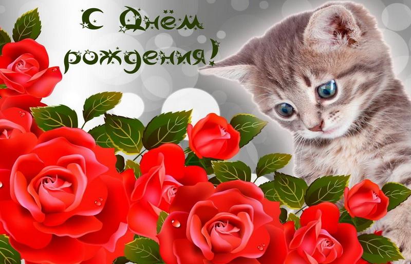Конец, открытки с красивыми розами для друзей