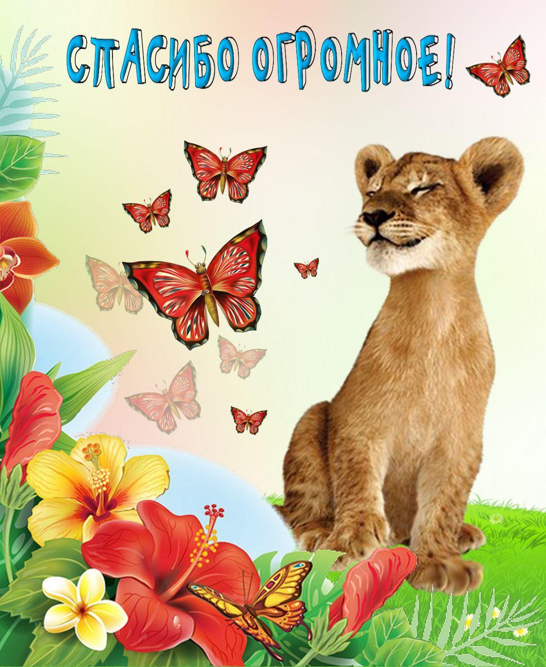 Спасибо открытки с животными