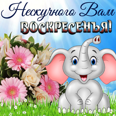 Картинка классного воскресного дня для друзей! скачать открытку бесплатно | 123ot