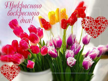 Красивая картинка классного воскресенья для друзей! скачать открытку бесплатно | 123ot