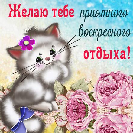 Красивая открытка классного воскресного дня для друзей! скачать открытку бесплатно | 123ot
