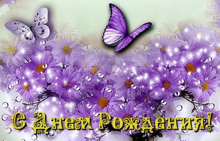 Яркая, красивая открытка с днём рождения племяннице с текстом, с пожеланием и стихом! Дорогоая племяшка, с днём рождения! Открытка, бабочки, фиолетовые цветы. Скачать открытку на день рождения девушке, девочке бесплатно онлайн! скачать открытку бесплатно | 123ot