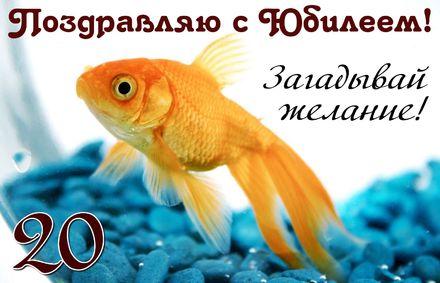 Яркая, красивая открытка с днём рождения на юбилей 20 лет с текстом, с пожеланием и стихом! С юбилеем, с днём рождения, с двадцатилетием! Открытка с золотой рыбкой на фоне синих камешков. Скачать открытку на юбилей бесплатно онлайн! скачать открытку бесплатно | 123ot