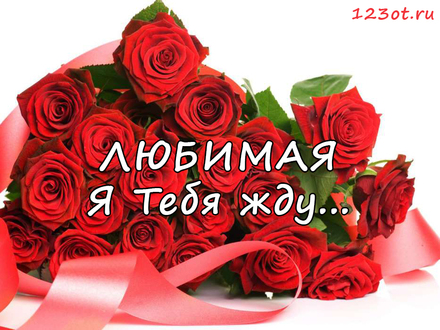 Открытка я жду тебя и скучаю с цветами для любимой девушки или женщины! скачать открытку бесплатно | 123ot