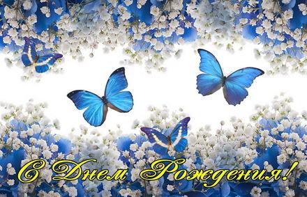Яркая, красивая открытка с днём рождения племяннице с текстом, с пожеланием и стихом! Дорогоая племяшка, с днём рождения! Поздравление, синие бабочки. Скачать открытку на день рождения девушке, девочке бесплатно онлайн! скачать открытку бесплатно | 123ot