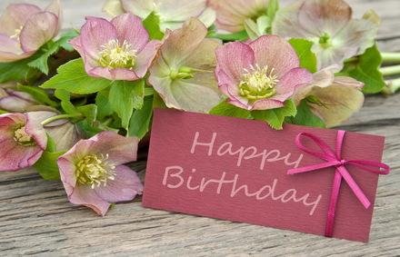 Яркая, красивая открытка с днём рождения любимой жене с текстом, с пожеланием и стихом! Дорогоая женушка, с днём рождения! Поздравляю, Happy Birthday. Скачать открытку на день рождения жене, любимой женщине бесплатно онлайн! скачать открытку бесплатно | 123ot