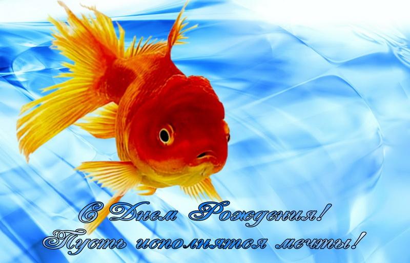 Рождеству, открытки золотые рыбки