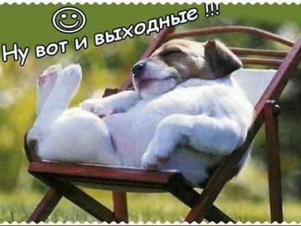 Красивая картинка приятной субботы лучшим друзьям и коллегам! скачать открытку бесплатно | 123ot