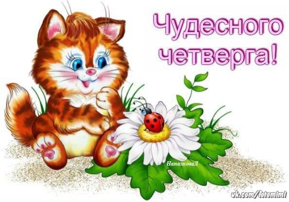 Открытка хорошего настроения в четверг, цветы