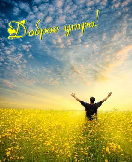 Яркая, красивая открытка с добрым утром, подруга, подружка! Цветочное поле на восходе солнца. Скачать бесплатно онлайн! скачать открытку бесплатно | 123ot