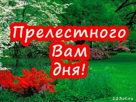 Красивая картинка с пожеланием хорошего для для босса! скачать открытку бесплатно | 123ot