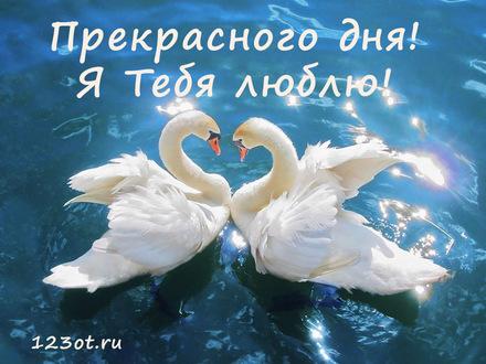 Романтическая открытка хорошего дня любимому парню! скачать открытку бесплатно | 123ot