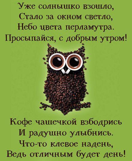 Яркая, красивая открытка с добрым утром, подруга, подружка! Сова из кофейных зернышек. Скачать бесплатно онлайн! скачать открытку бесплатно | 123ot