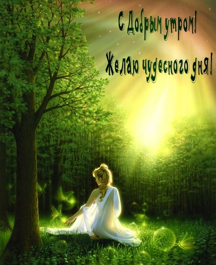 Яркая, красивая открытка с добрым утром, подруга, подружка! Восход солнца в сказочном лесу. Скачать бесплатно онлайн! скачать открытку бесплатно   123ot