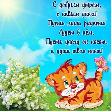 Яркая, красивая открытка с добрым утром, подруга, подружка! Забавный котенок желает доброго утра. Скачать бесплатно онлайн! скачать открытку бесплатно   123ot