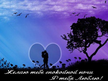 Изумительная картинка с пожеланием спокойной и доброй ночи для любимого человека! скачать открытку бесплатно | 123ot