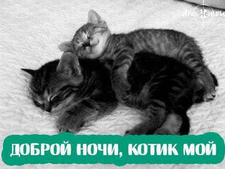 Романтическая картинка спокойной ночи любимому парню! скачать открытку бесплатно   123ot