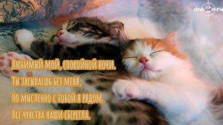 Великолепная картинка с пожеланием спокойной и доброй ночи для любимого! скачать открытку бесплатно | 123ot