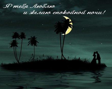 Великолепная картинка с пожеланием спокойной и доброй ночи для любимого! скачать открытку бесплатно   123ot