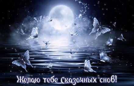 Яркая, красивая открытка спокойной ночи, сладких снов! Фантастические бабочки на фоне луны. Скачать открытку спокойной ночи бесплатно онлайн! скачать открытку бесплатно | 123ot