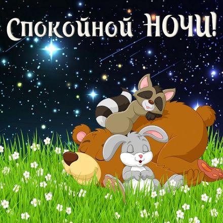 Яркая, красивая открытка спокойной ночи, сладких снов! Картинка с животными спящими на травке. Скачать открытку спокойной ночи бесплатно онлайн! скачать открытку бесплатно   123ot